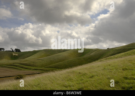 Lansdowne Monument at Cherhill near the Marlborough downs in Wiltshire on a cloudy bright day. - Stock Photo