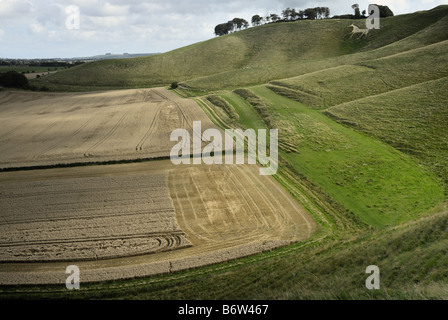 Cherhill Downs and white horse near the Marlborough downs in Wiltshire on a cloudy bright day. - Stock Photo