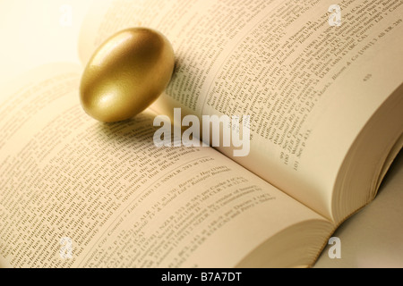 Golden egg balanced between book pages - Stock Photo