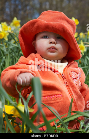 Baby wearing red coat and hat sitting in the meadow between yellow flowers. - Stock Photo