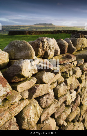 Drystone wall delineating farmland near Askrigg in the Wensleydale valley, Yorkshire Dales National Park, England - Stock Photo