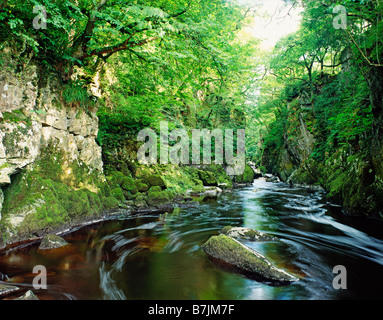 GB WALES CONWY BETWS Y COED FAIRY GLEN RIVER POOL - Stock Photo
