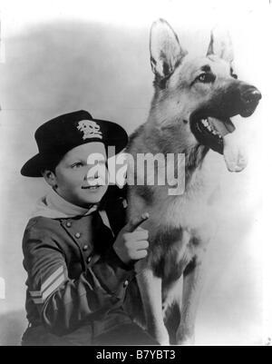 the Adventures of Rin Tin Tin The Adventures of Rin-Tin-Tin  Year: 1954 - [TV-Series 1954-1959] usa Adventures of - Stock Photo