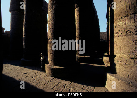 Egypt, Luxor, Karnak Temple. Hypostyle Hall of Great Temple of Amun.  Could hold St Peter's in Rome and St Paul's - Stock Photo