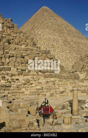 Camel and rider at the Pyramids, Giza, Cairo, Egypt - Stock Photo