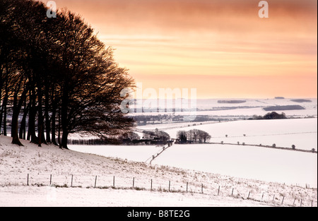 A snowy winter day on Morgan's Hill looking over the Wiltshire Downs England UK - Stock Photo