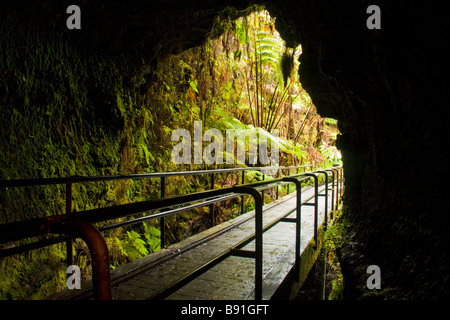 Thurston Lava Tube - Volcanoes National Park, Big Island, Hawaii, USA - Stock Photo