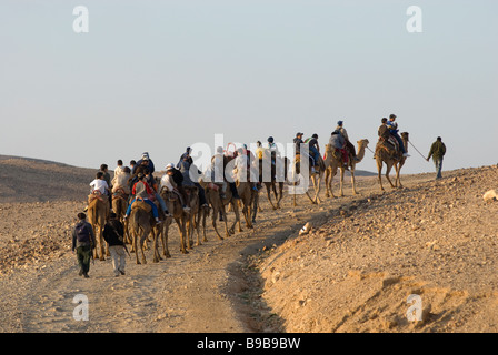 Group of Israeli schoolchildren riding camels in the Negev desert. Southern Israel - Stock Photo