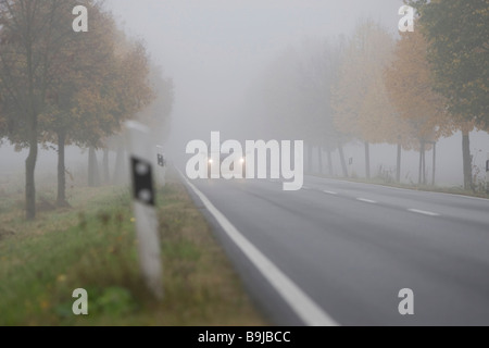 Car driving with dimmed headlights on a country road in dense fog, Hesse, Germany, Europe - Stock Photo
