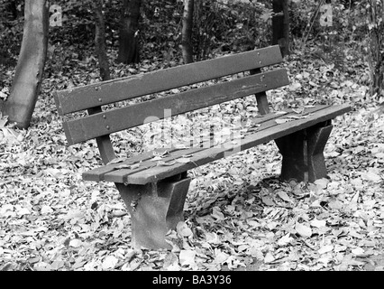 Seventies, black and white photo, autumn, autumn leaves, wooden bench, symbolic - Stock Photo
