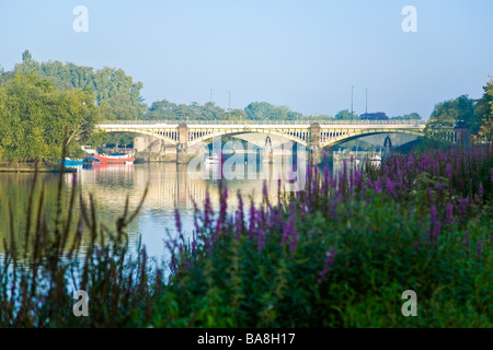 An early morn riverside view of Richmond Railway bridge across the Thames downstream from Richmond with the road - Stock Photo