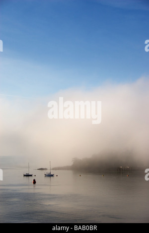 Sailing boats moored at the coast on a foggy morning. - Stock Photo