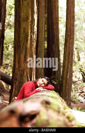 Sequoia Forest in California - Stock Photo