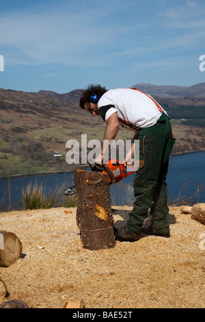 Woodcutter _Man using Husqvana Chain Saw on hill above Lochbroom, Scotland, UK - Stock Photo