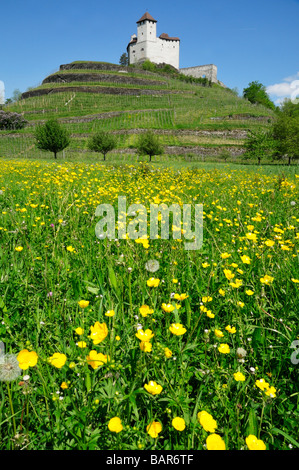 Castle Gutenberg in early spring, Balzers, Liechtenstein FL - Stock Photo