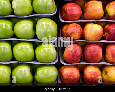 Red and green apples on display in food market Grown in Washington State USA Pacific Northwest - Stock Photo