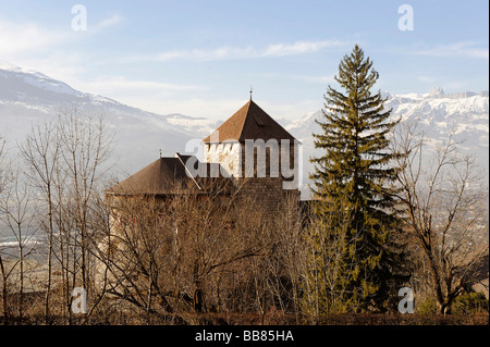 Vaduz Castle, Vaduz, Liechtenstein principality, Europe - Stock Photo