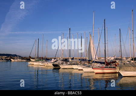 italy, le marche, san benedetto del tronto, port - Stock Photo