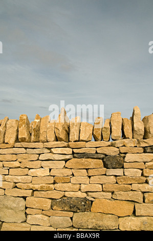 a dry stone wall in the cots wolds a traditional way of building walls in this area - Stock Photo