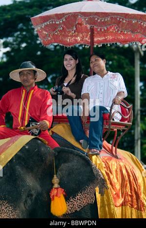 Costume elephants Ayutthaya Thailand - Stock Photo