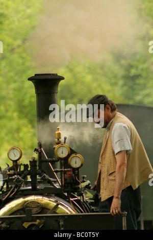 Steam train on the Teifi Valley railway Ceredigion West Wales UK - Stock Photo