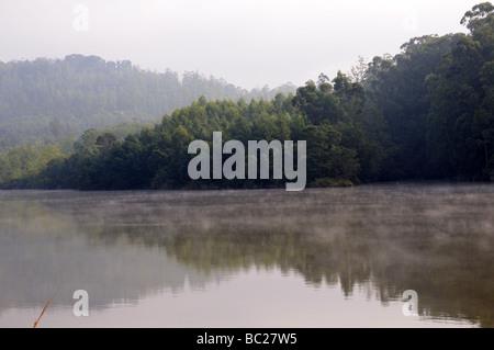 Early morning mist over Mhlambanyatsi river Mlilwane Wildlife Sanctuary Swaziland South Africa - Stock Photo
