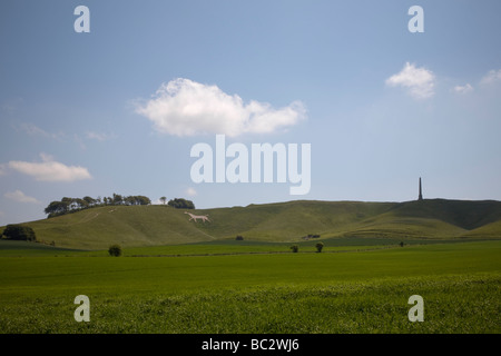 chalk white horse and monument on Cherhill Down near Calne in Wiltshire on a sunny summer day - Stock Photo
