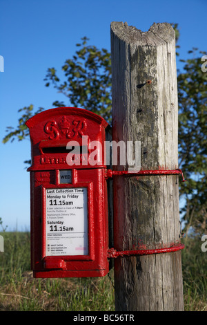 freshly painted red GR post office mail collection lampbox postbox tied to a part telegraph pole in county down - Stock Photo