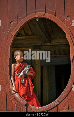 Myanmar. Burma. Nyaung-shwe. A young novice monk holding a cat at an oval window of the wooden Shwe Yaunghwe monastery. - Stock Photo