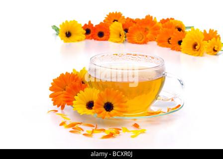 Tee Ringelblume tea marigold 04 - Stock Photo