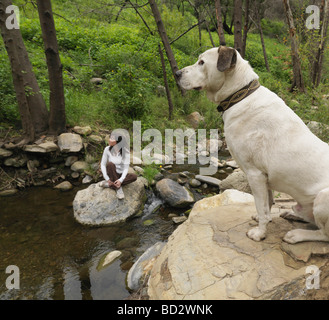 Dog and woman resting on rocks - Stock Photo