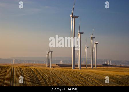 Wind Turbines, wind farm operating in harvested wheat field. - Stock Photo