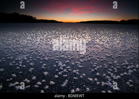 Frost roses on the ice on a winter evening at Vanemfjorden in the lake Vansjø in Østfold, Norway. - Stock Photo