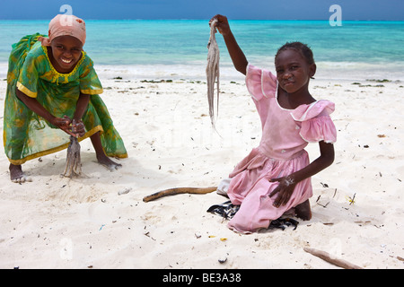 Children beating an octopus with sticks to make it edible, Jambiani, Zanzibar, Tanzania, Africa - Stock Photo