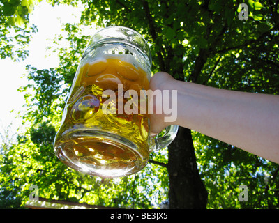 A Mass beer, two litre beer glass, Fischbach, Upper Bavaria, Bavaria, Germany, Europe - Stock Photo