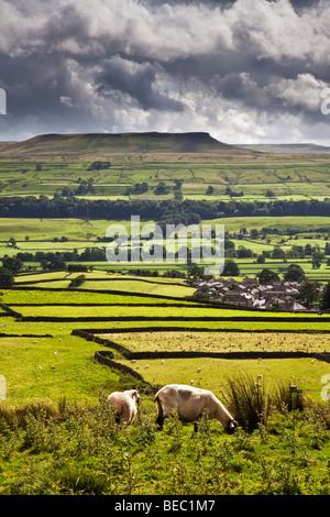Addlebrough and Askrigg, Wensleydale, Yorkshire Dales National Park - Stock Photo
