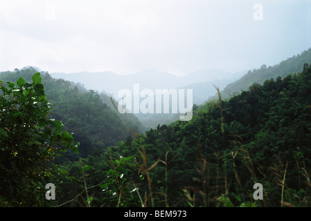Lush mountain landscape - Stock Photo