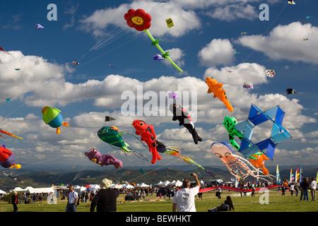 Kites at the time of the 'Cervolix' Air Festival (Auvergne - France). Cerfs-volants lors du festival aérien 'Cervolix' - Stock Photo
