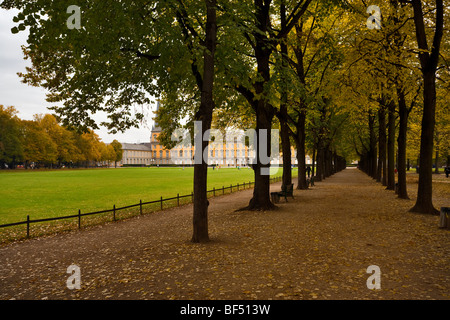 view through a beech seamed avenue to the Kurfürstliches Schloss (Electoral Prince's Castle) at Hofgarten (Court - Stock Photo