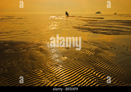 People on the beach at sunset, Wahnekewaning Beach, Ontario, Canada - Stock Photo