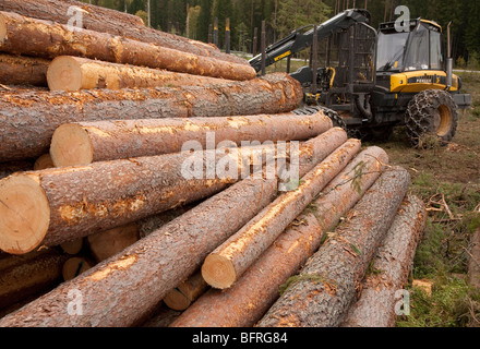 Pile of pine ( pinus sylvestris ) logs and Finnish Ponsse Elk forest harvester , Finland - Stock Photo