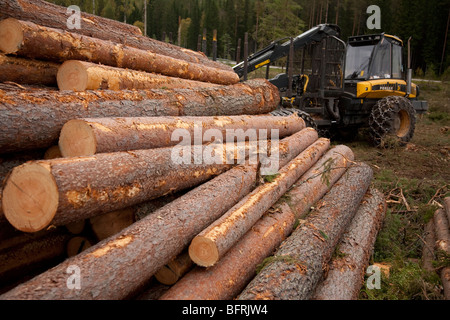 Pile of pine ( pinus sylvestris )logs and Finnish Ponsse Elk forest harvester , Finland - Stock Photo