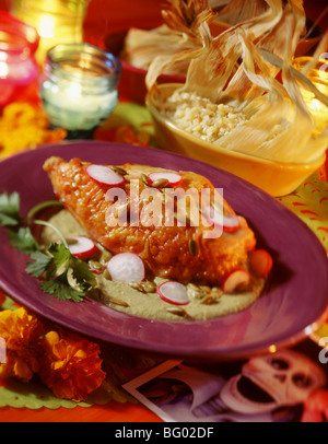 Roasted chicken with cilantro mole verde and corn tamales - Stock Photo