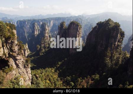 Karst limestone rock formations at Zhangjiajie Forest Park, Wulingyuan Scenic Area, Hunan Province, China, Asia - Stock Photo