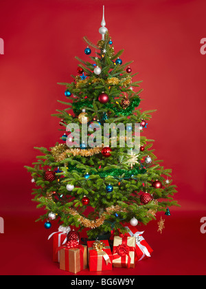 Decorated real Christmas tree isolated on red background - Stock Photo