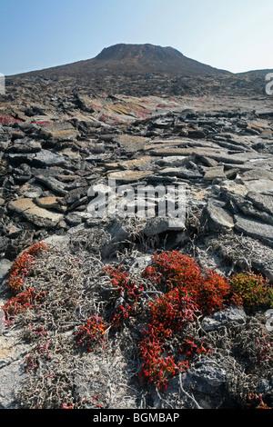 The volcanic lava rock formation Sombrero Chino / Chinaman's Hat on Santiago Island / San Salvador Island, Galápagos - Stock Photo