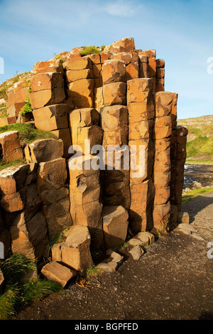 Red basaltic prisms at the Giant's Causeway Antrim Northern Ireland a natural phenomena and a world heritage site. - Stock Photo