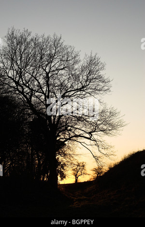 A scene from the South Downs National park at sunset. - Stock Photo
