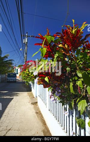 street scene in Utila, Honduras - Stock Photo