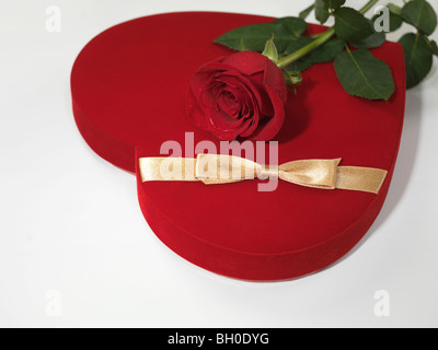 Red heart-shaped gift box and a red rose isolated on white background - Stock Photo